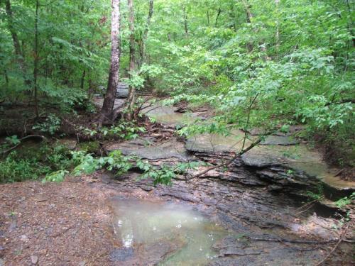 Flat_creek
