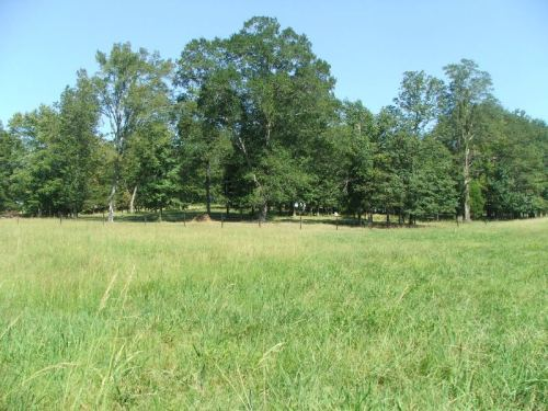 61_ac_fayette_pasture_trees