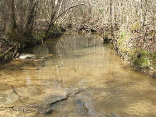Gilliam_1a_creek